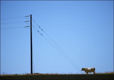 Чем линии электропередачи опасны для